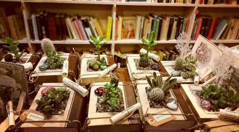 """""""Il giardino nei libri""""... tornano!!"""